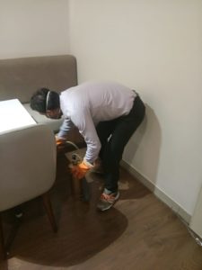 Pest Control Services for Home in Nagpur